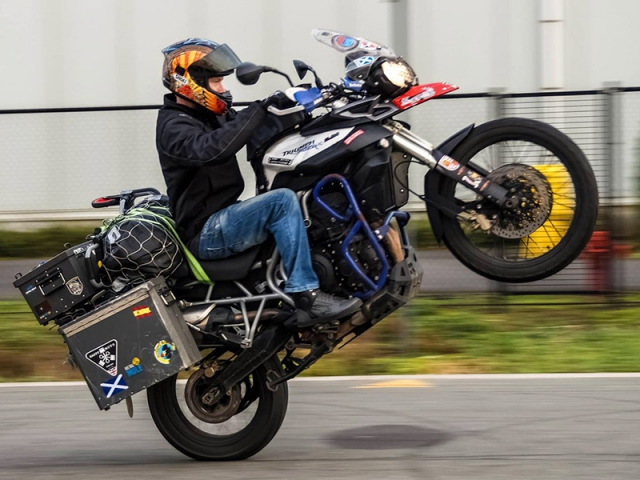 Triumph wheelie