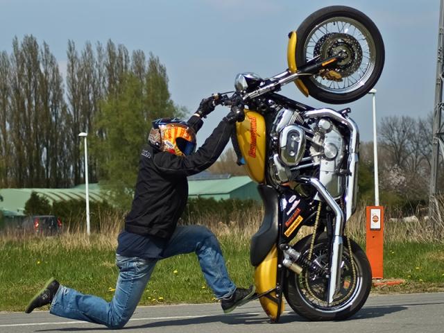 Harley wheelie