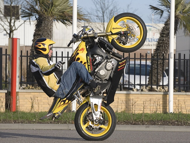 Honda cbr wheelie